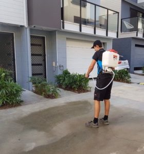 driveway cleaning tweed heads