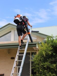 roof and gutter cleaning tweed heads
