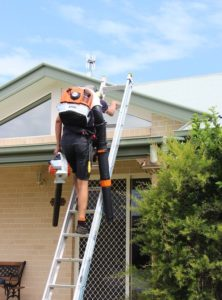 affordable gutter cleaning tweed heads